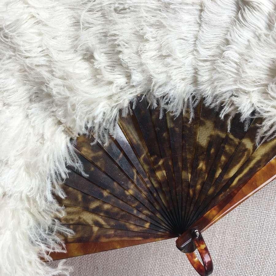 Ostrich feather and tortoiseshell fan